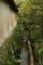 『滋賀県 石山寺 西国第十三番札所』