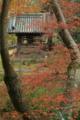 京都市西京区大原野「十輪寺」