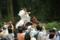 『2016 葵祭 走馬の儀』