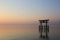 『滋賀県高島市 白鬚神社』 湖中大鳥居