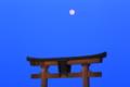 『滋賀県高島市 白鬚神社』 月