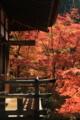 2016「永観堂禅林寺」紅葉