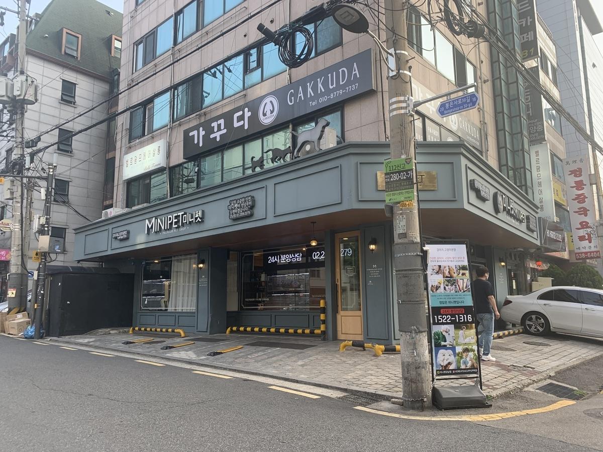 韓国,ペットショップ