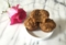 Mini Zucchini Muffins With Aquafaba