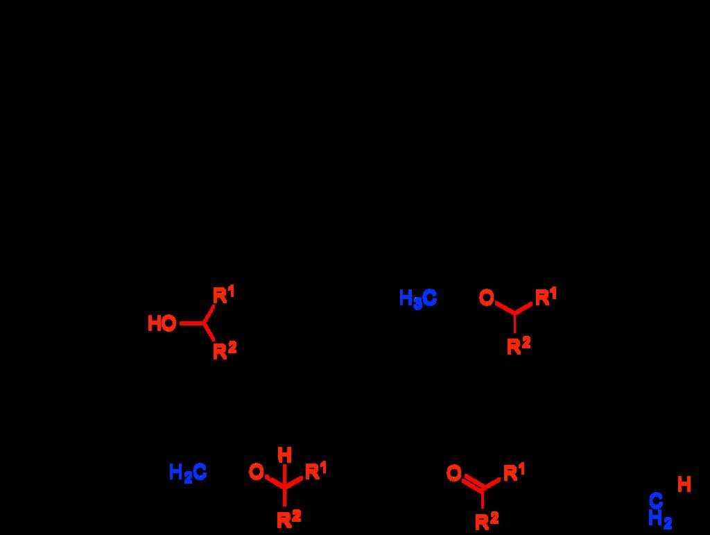 f:id:tora-organic:20171216185526p:plain