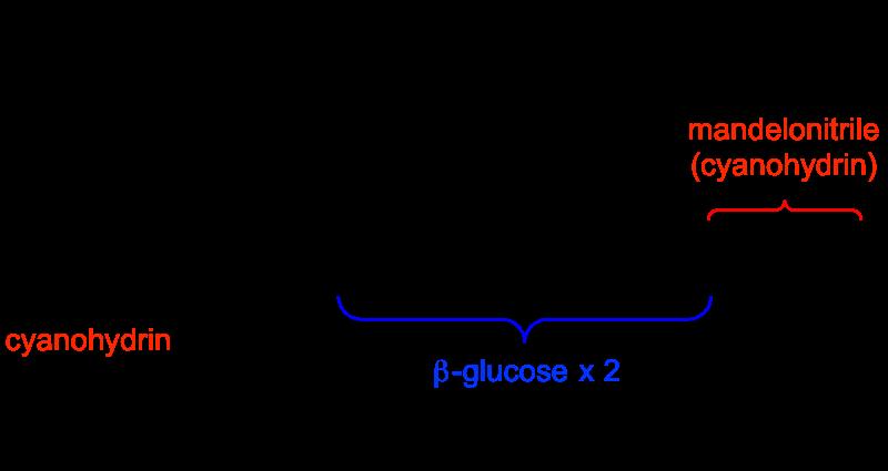 シアノヒドリン図1