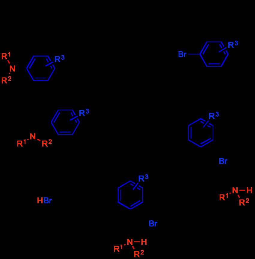 Buchwald-Hartwig-1