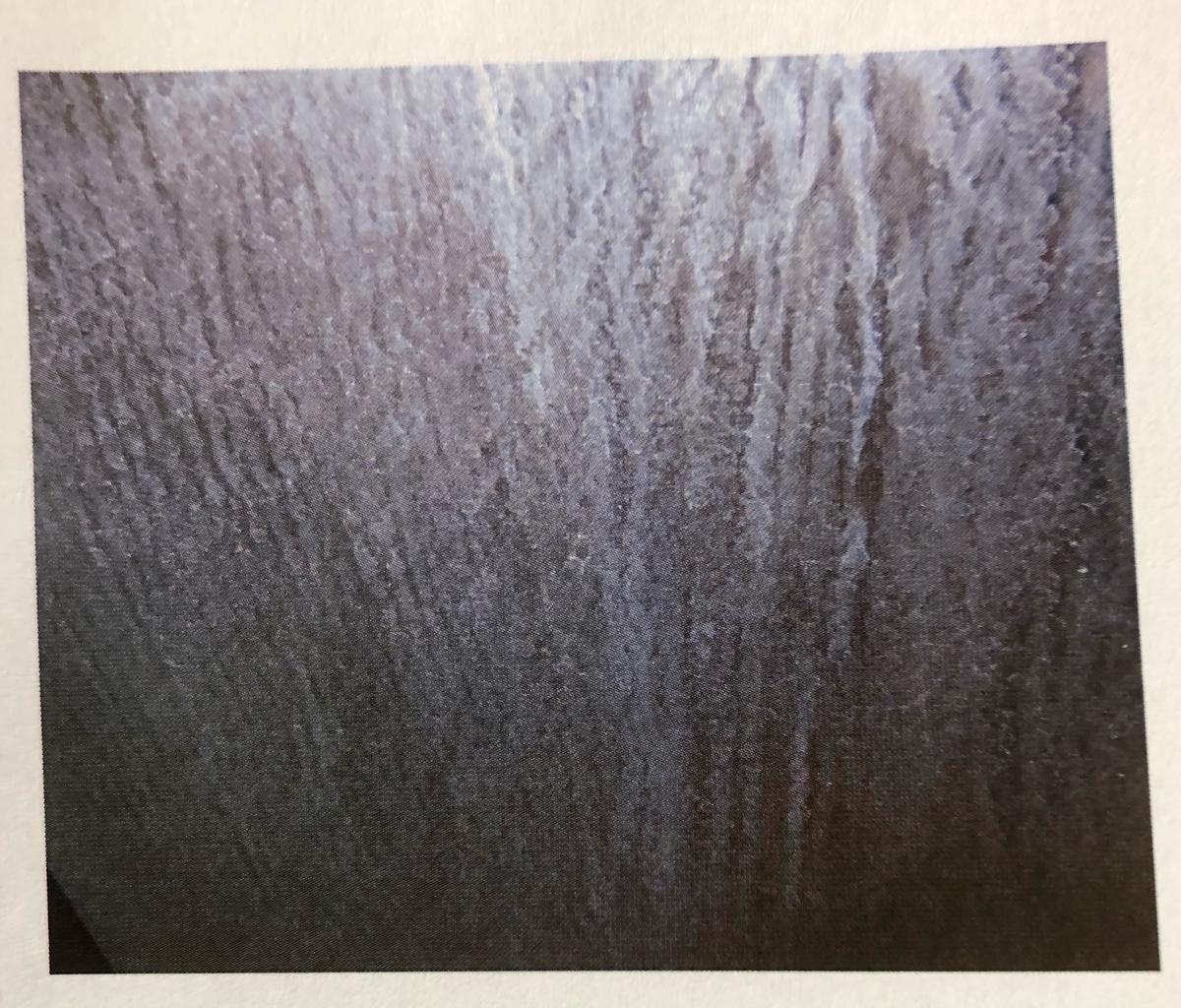 f:id:torabur:20201201200241j:plain