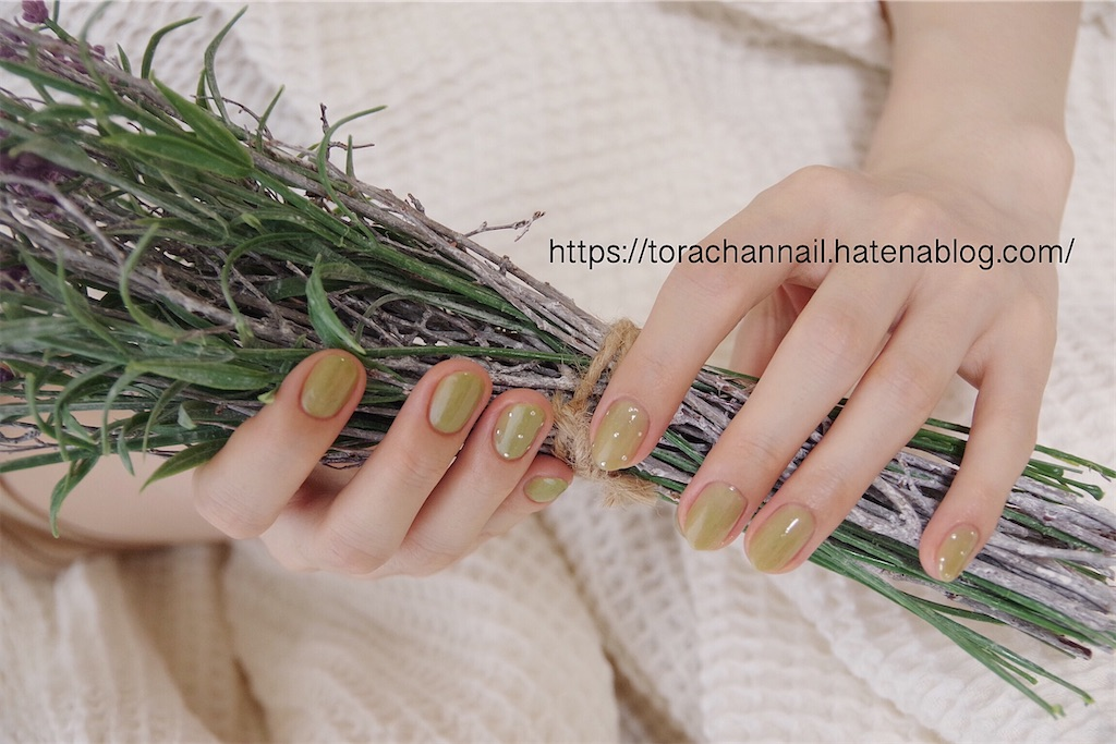 f:id:torachannail:20200823232147j:image