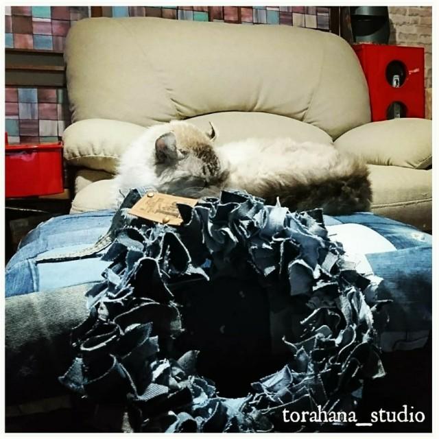 f:id:torahana-studio:20201012071413j:image