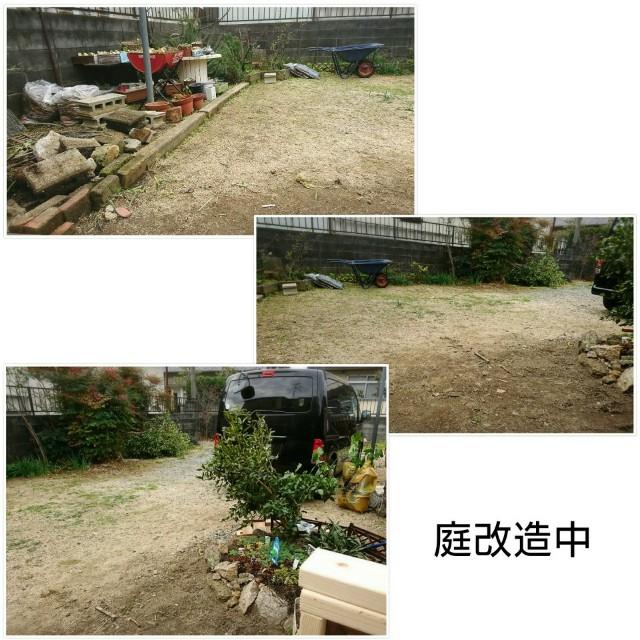 f:id:torahana-studio:20201016210309j:image