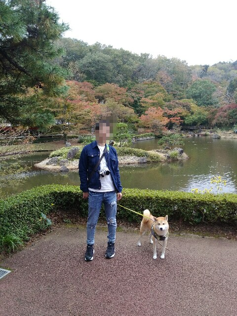 f:id:torajiro-0612:20181116200301j:image