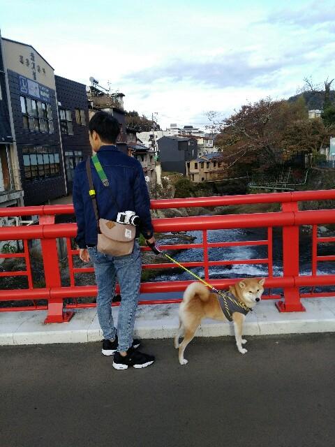 f:id:torajiro-0612:20181116201241j:image