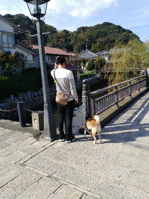f:id:torajiro-0612:20181117170949j:image