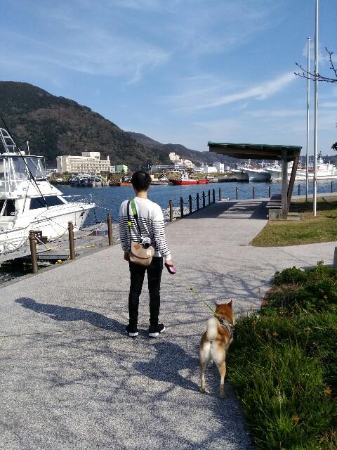 f:id:torajiro-0612:20181117171019j:image