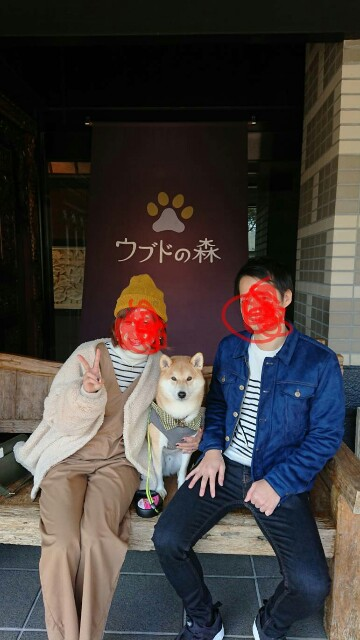 f:id:torajiro-0612:20181117201452j:image