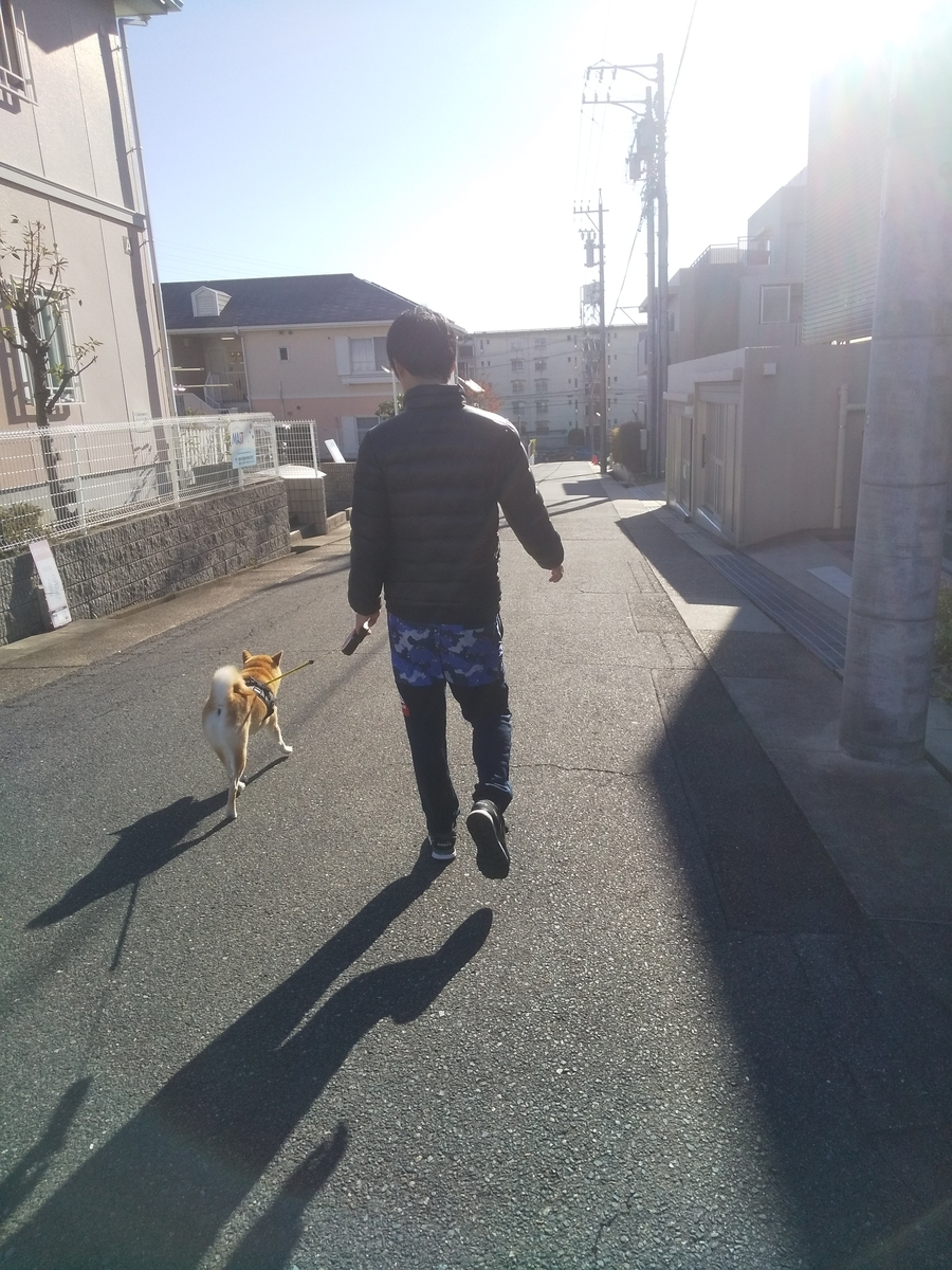 f:id:torajiro-0612:20191209070126j:plain