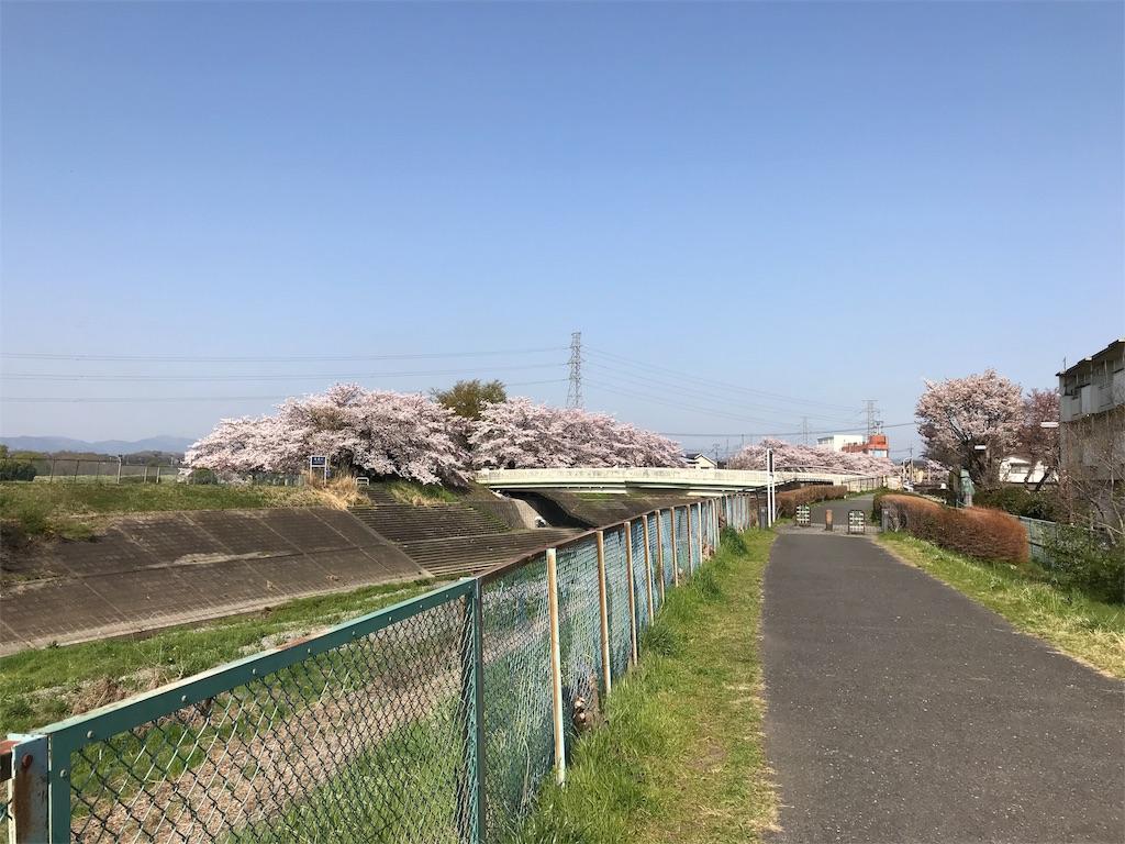 f:id:torakichi7:20180401095352j:image