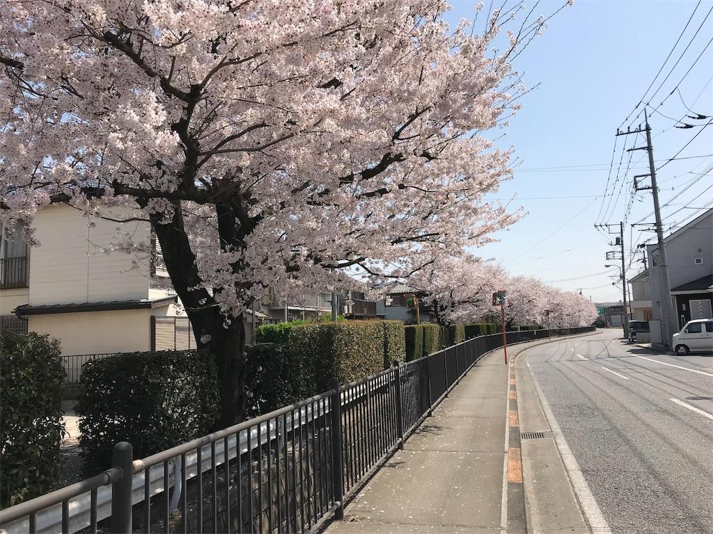f:id:torakichi7:20180401095427j:image