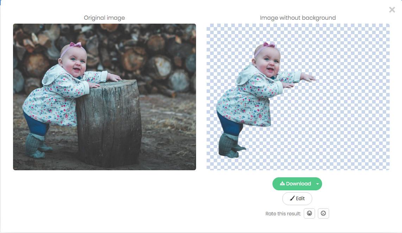 f:id:toraneko-design:20191021155648j:plain