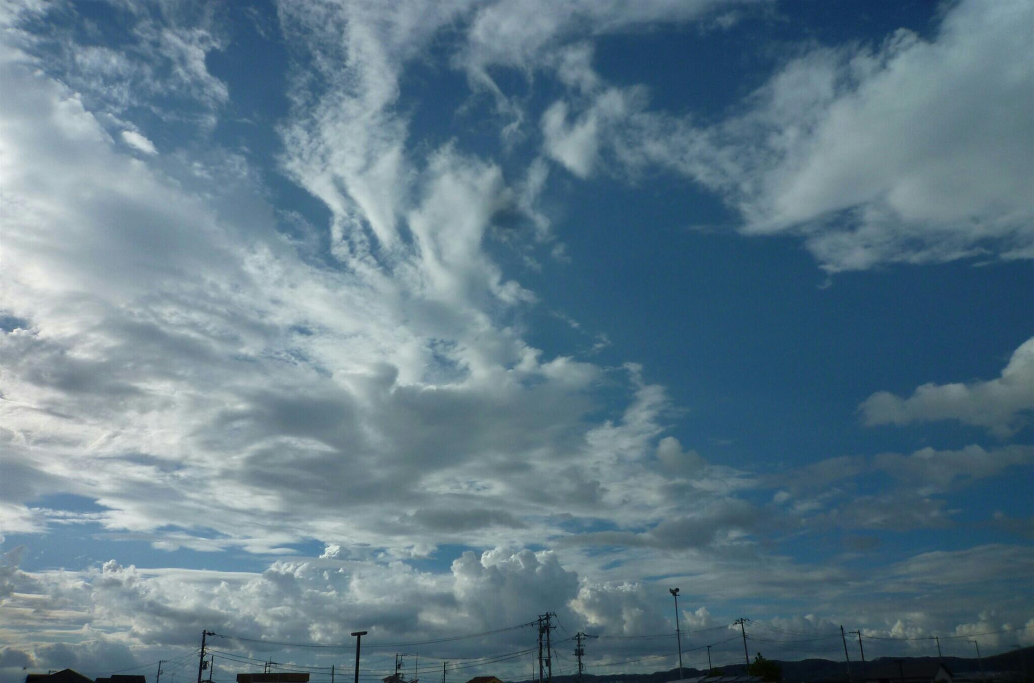 f:id:toranokotaro:20160831212901j:plain
