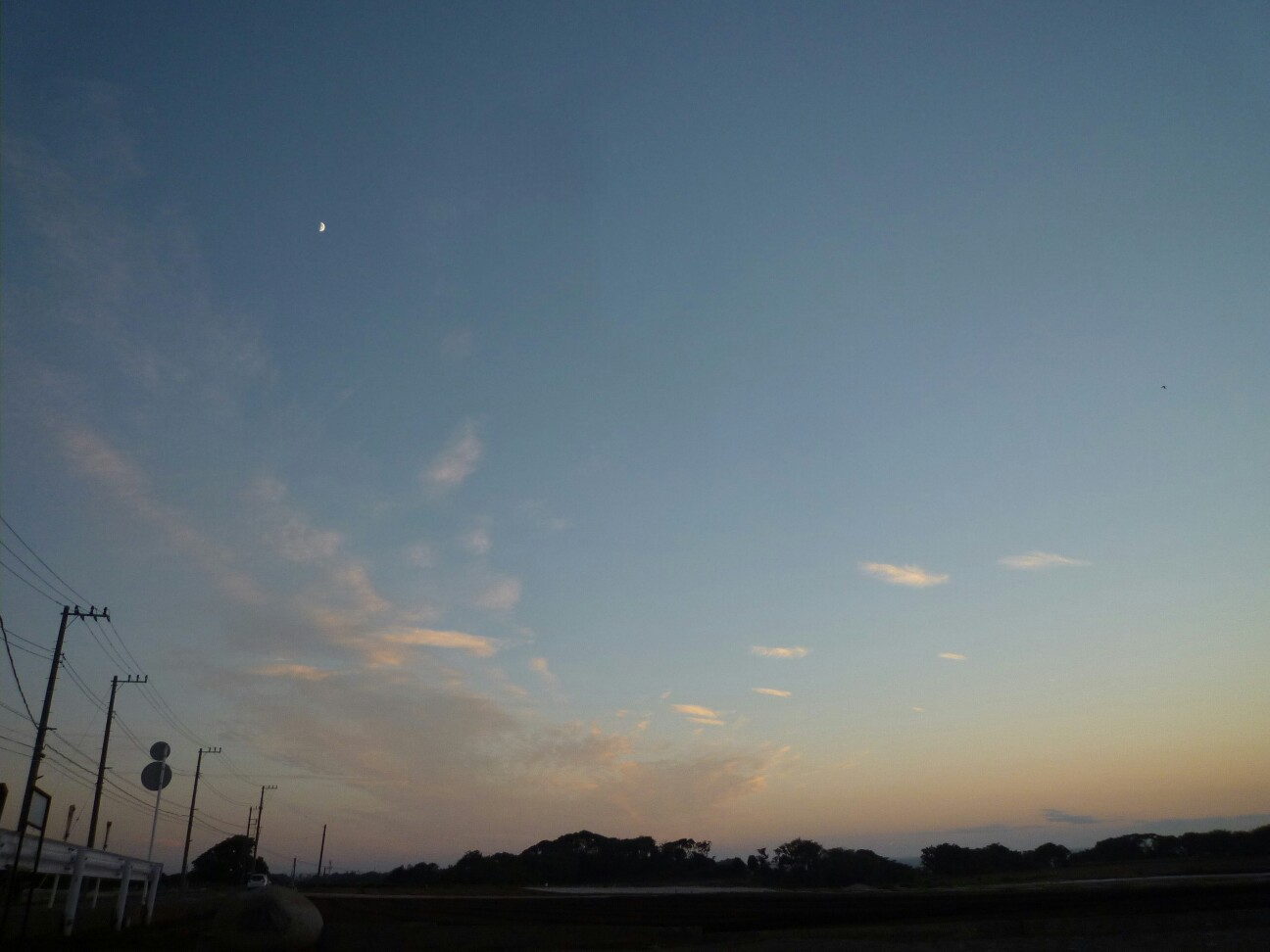 f:id:toranokotaro:20160913175147j:plain