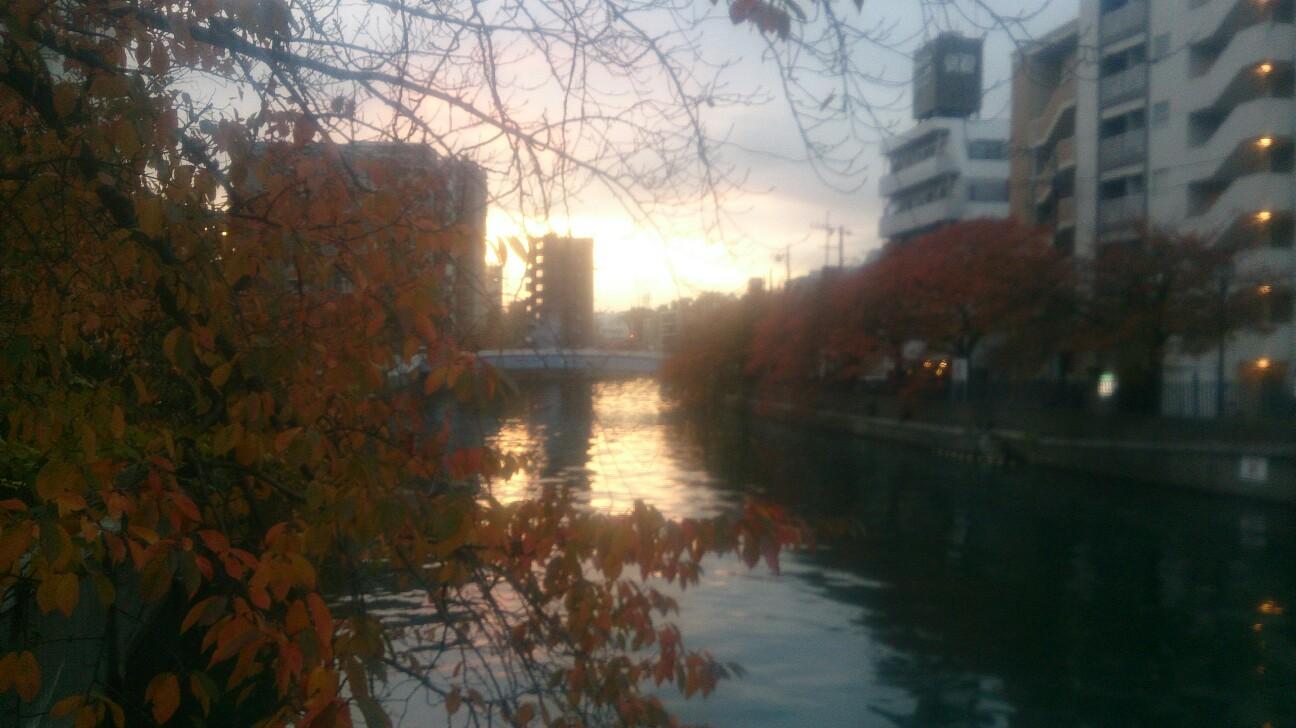 f:id:toranokotaro:20161207003235j:plain