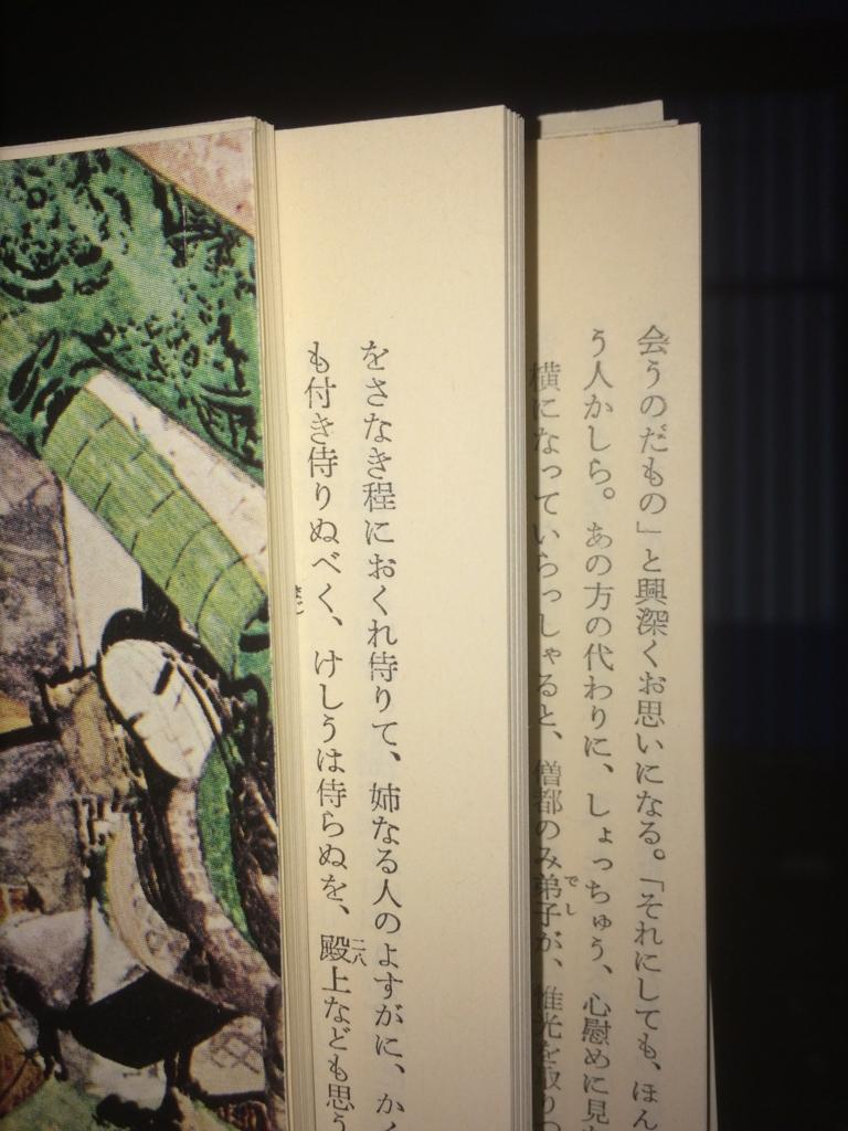 f:id:toranosuke_blog:20160529004418j:plain:w200