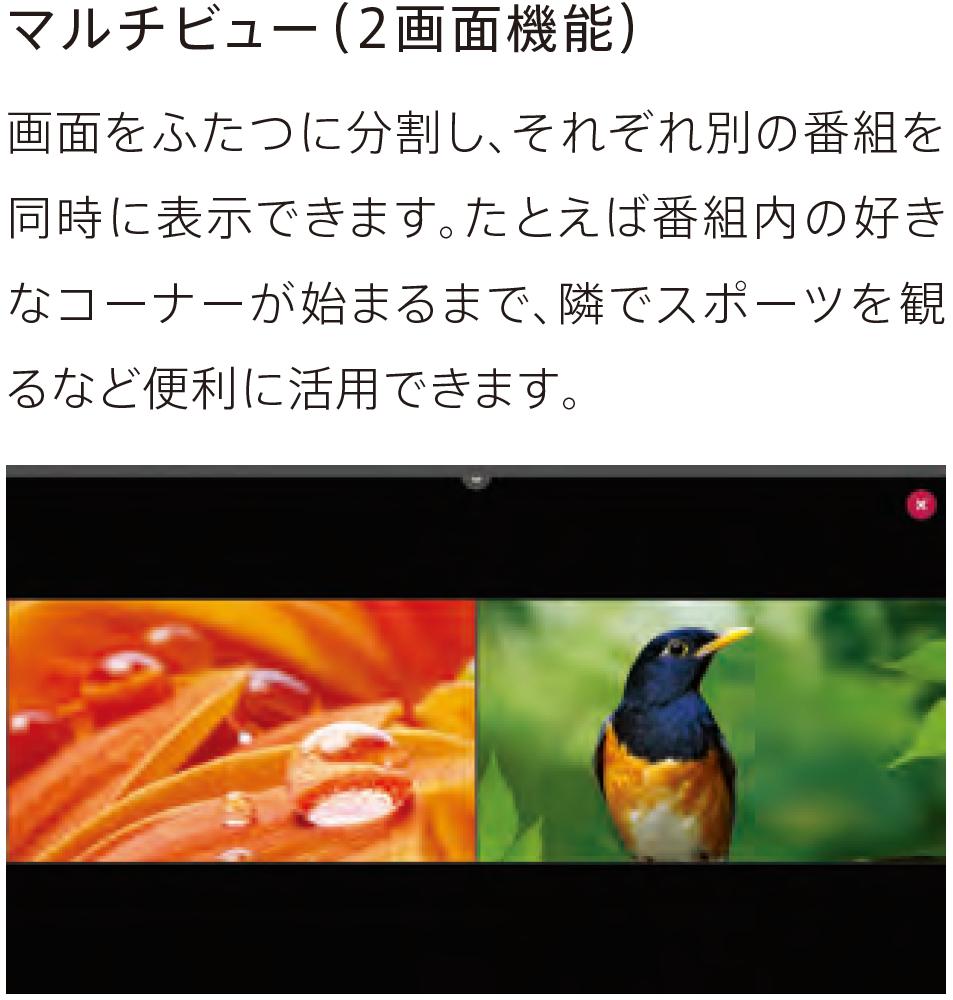 f:id:toranosuke_blog:20170128161127p:plain:w300
