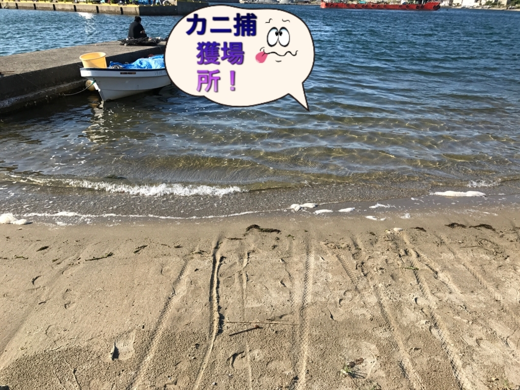 f:id:torappi_kayak2016:20170619100434j:plain
