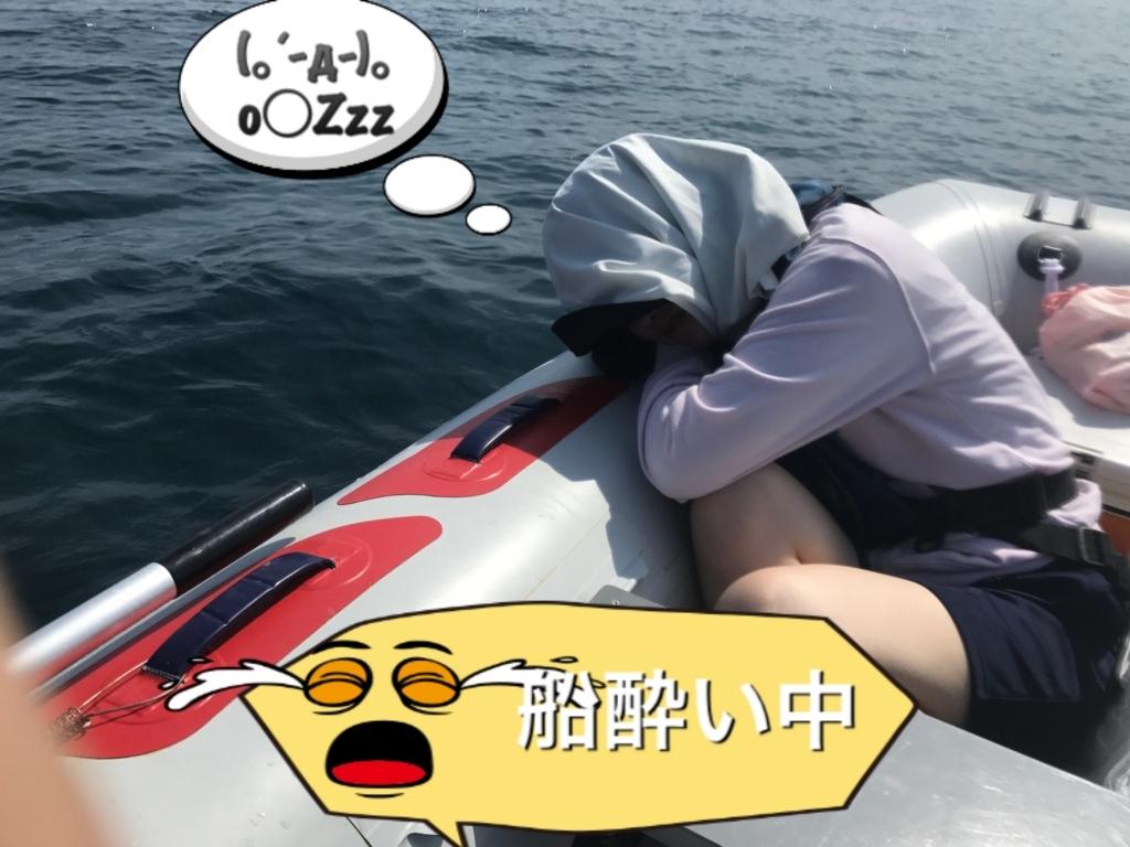 f:id:torappi_kayak2016:20170625172124j:plain