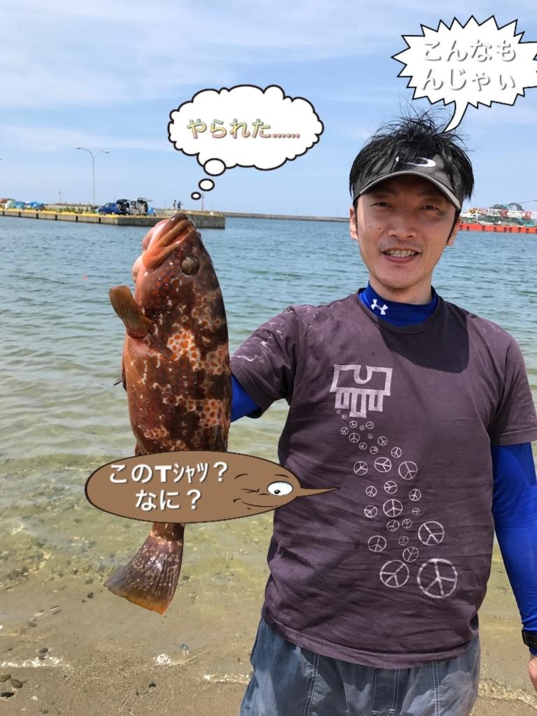 f:id:torappi_kayak2016:20170625172417j:plain