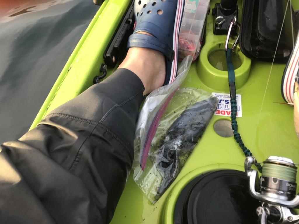 f:id:torappi_kayak2016:20170926081510j:plain