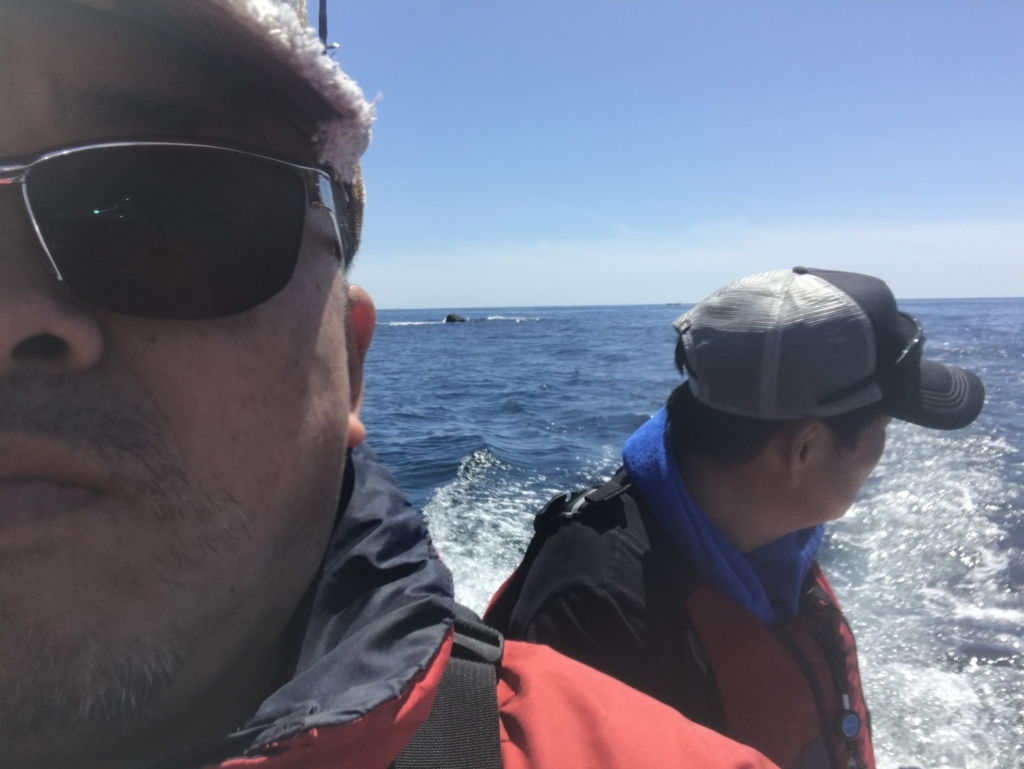 f:id:torappi_kayak2016:20180617213908j:plain