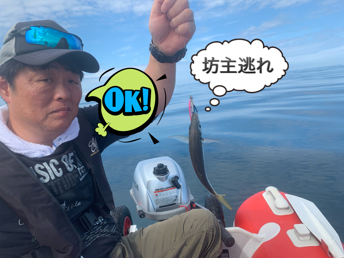 f:id:torappi_kayak2016:20190716134900j:plain