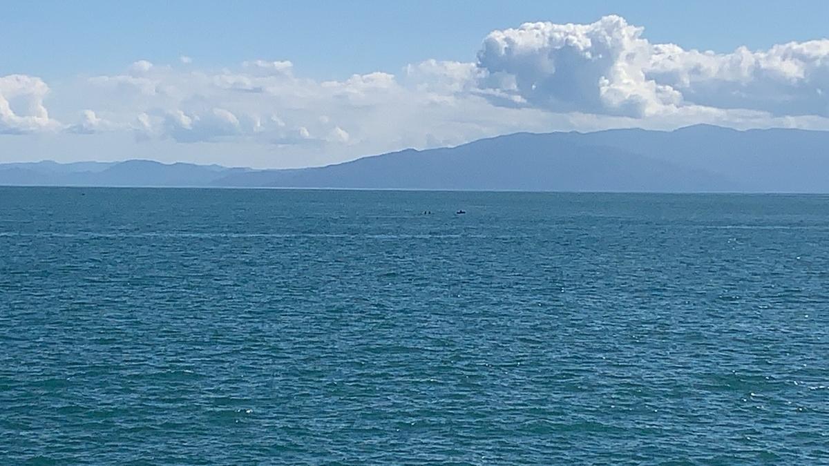 f:id:torappi_kayak2016:20201028211017j:plain