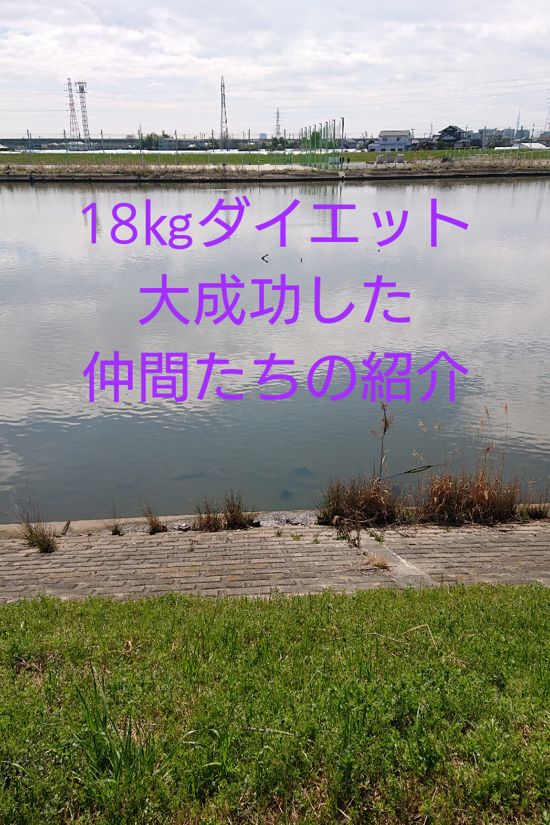 f:id:toratola:20200321144518p:plain