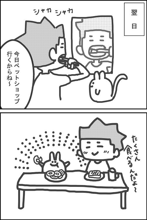 f:id:torausa_e:20170422000906p:plain