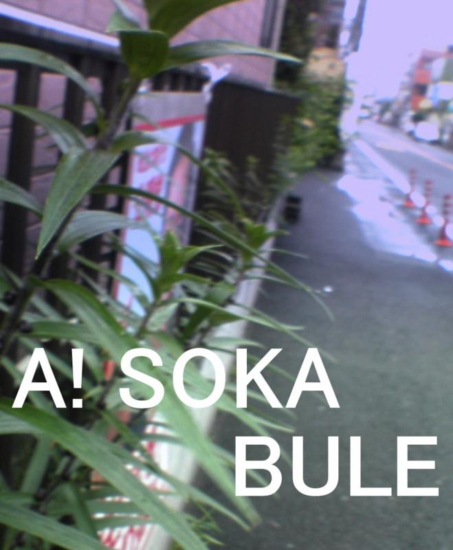 f:id:torayosa01:20090606120947j:image