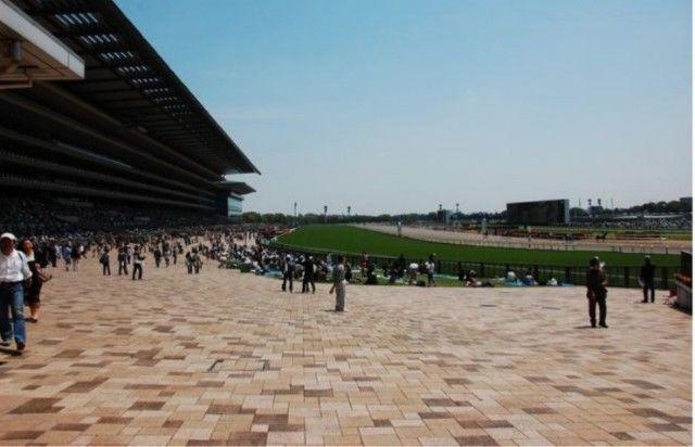 東京競馬場 綺麗