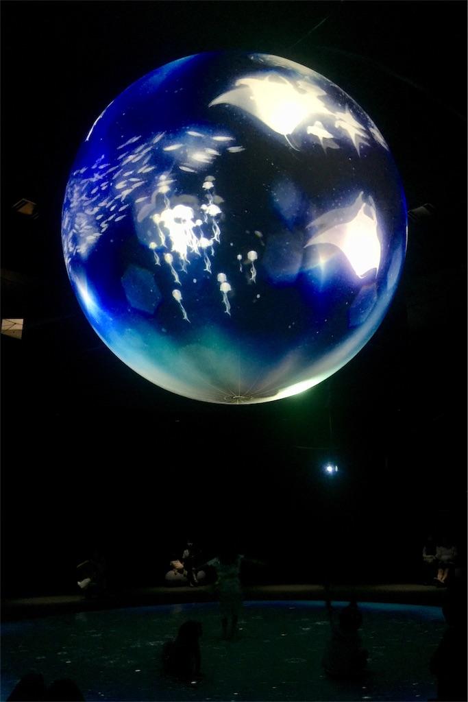 f:id:tori-planet:20180908123516j:image