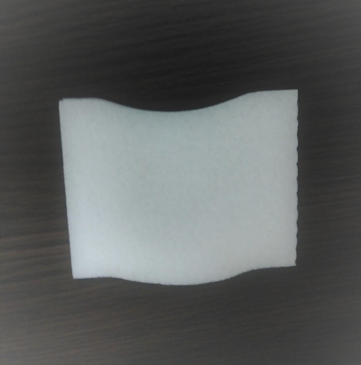 f:id:tori-tory:20210505194450j:plain