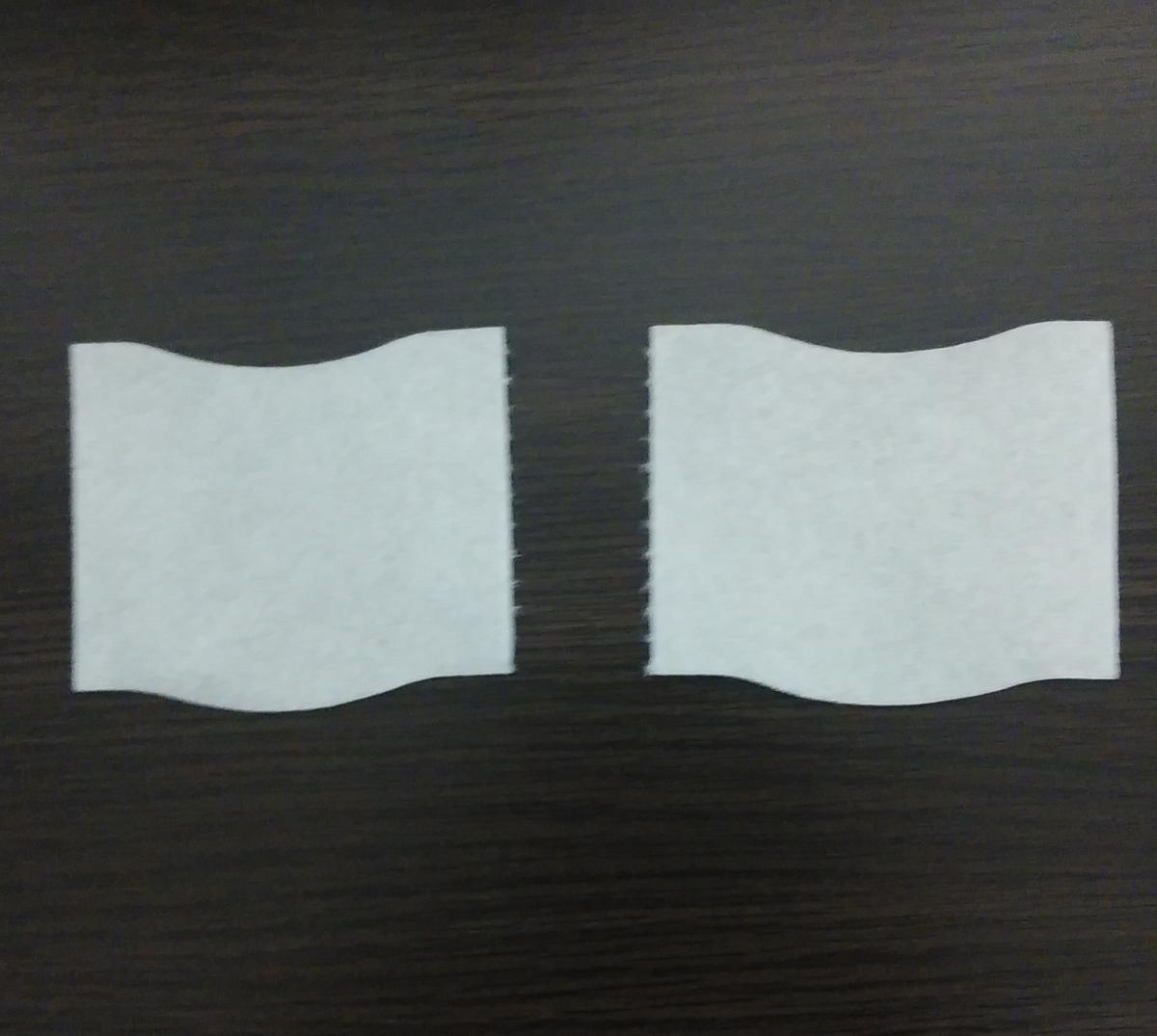 f:id:tori-tory:20210505195200j:plain