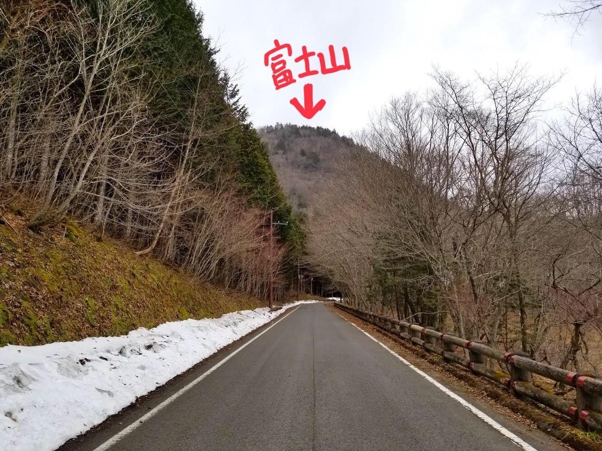 富士山 新湯富士 大沼