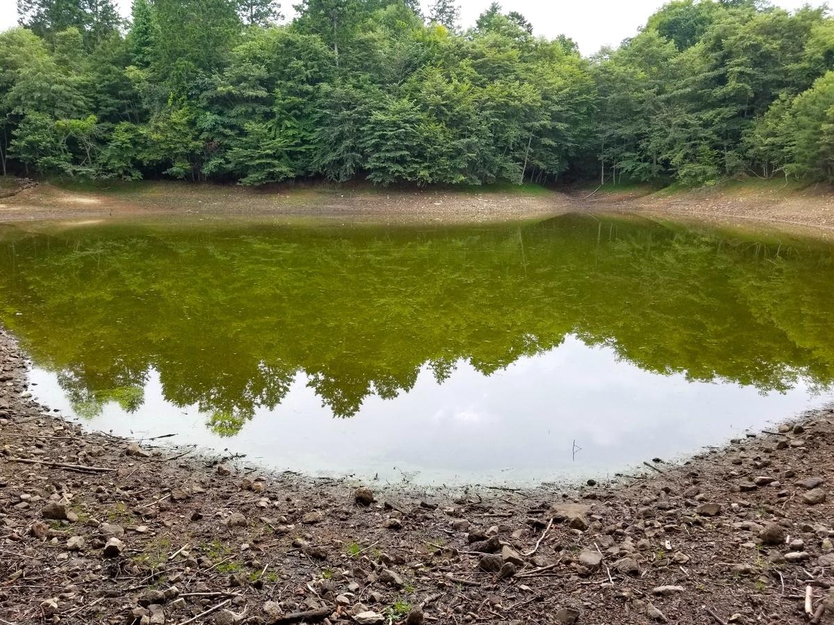塩原 森 池