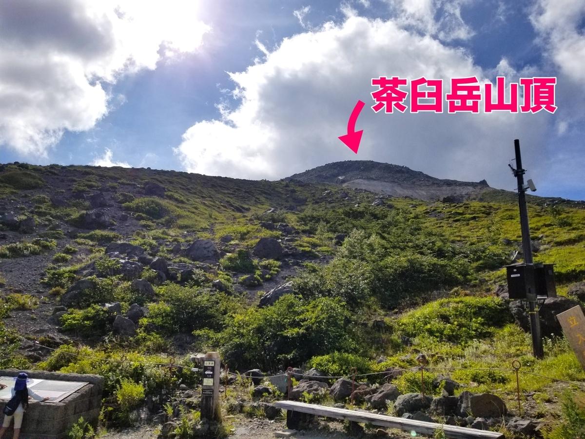 茶臼岳 森林限界