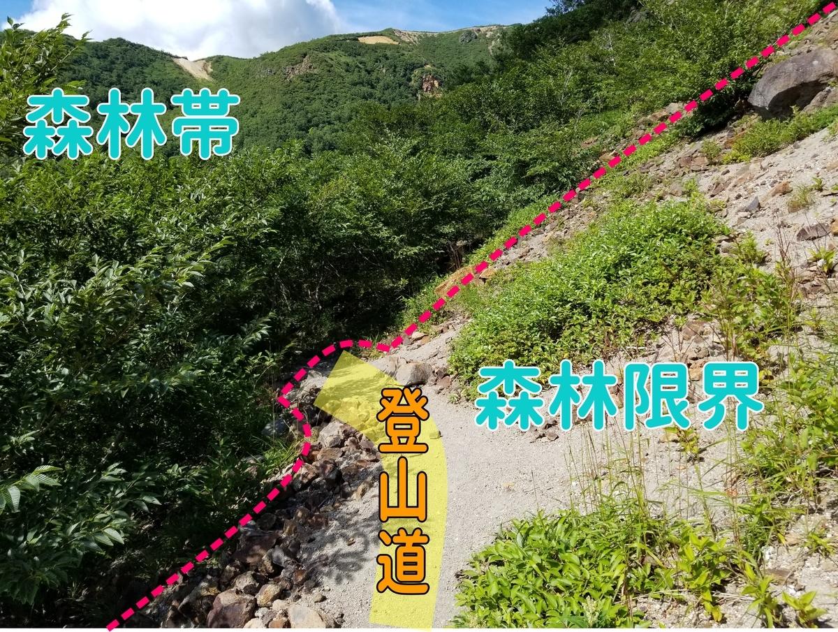 茶臼岳 森林限界 那須岳