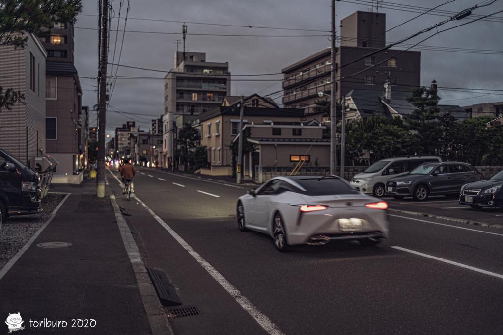 f:id:toriburo:20200903191645j:plain