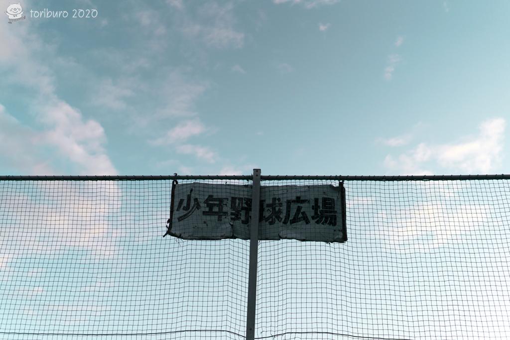 f:id:toriburo:20200906181600j:plain