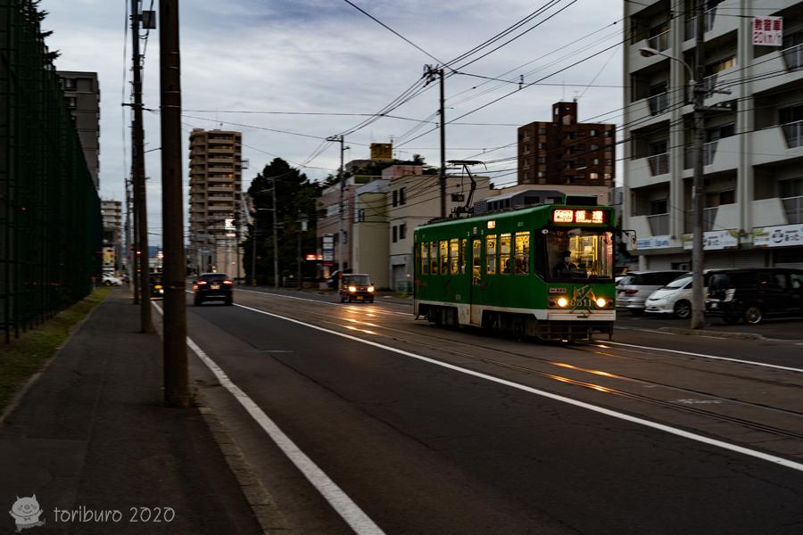 f:id:toriburo:20200926195649j:plain